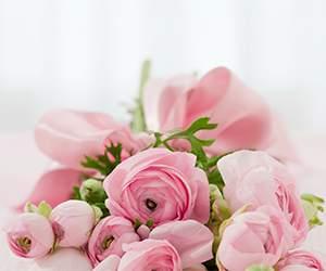 Rosen bei Euroflorist